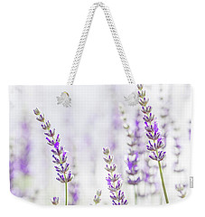 Lavender Flower In The Garden,park,backyard,meadow Blossom In Th Weekender Tote Bag by Jingjits Photography