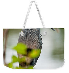 Weekender Tote Bag featuring the photograph Little Blue Heron by Christopher Holmes