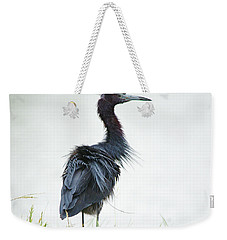 Little Blue Heron Portrait Weekender Tote Bag