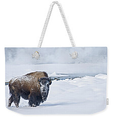 Weekender Tote Bag featuring the photograph Lone Bison by Gary Lengyel