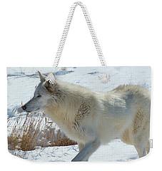 Lone White Wolf Weekender Tote Bag