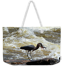 Lunch In The James River 14 Weekender Tote Bag