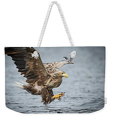 Male White-tailed Eagle Weekender Tote Bag