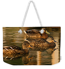Mallards Swimming In The Water At Magic Hour Weekender Tote Bag