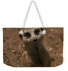 Weekender Tote Bag featuring the photograph Meerkat by Chris Flees
