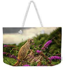 Meerkat Lookout Weekender Tote Bag by Martin Newman