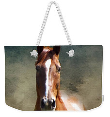 Misty In The Moonlight P D P Weekender Tote Bag