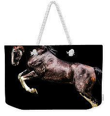 Morgan Stallion - Riley Weekender Tote Bag