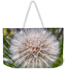 Weekender Tote Bag featuring the photograph Mountain Dandelion by Hugh Smith
