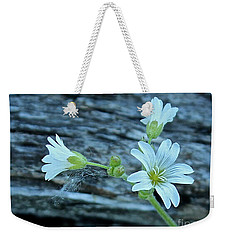 Weekender Tote Bag featuring the photograph Mouse-eared Chickweed by Ann E Robson