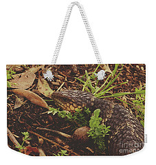 Weekender Tote Bag featuring the photograph Mr Bobtail by Cassandra Buckley