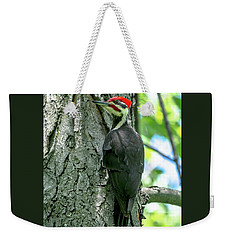 Mr. Pileated Woodpecker Weekender Tote Bag