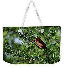 Weekender Tote Bag featuring the photograph Mr Red by Skip Willits