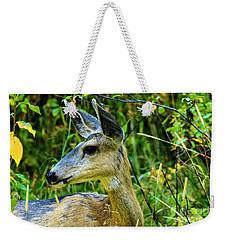 Mule Deer Weekender Tote Bag