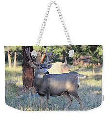 Weekender Tote Bag featuring the photograph Muley Buck by Shane Bechler