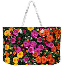 Weekender Tote Bag featuring the photograph Multi Colored Mums by Living Color Photography Lorraine Lynch