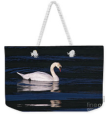 Weekender Tote Bag featuring the photograph Mute Swan  by Sharon Talson