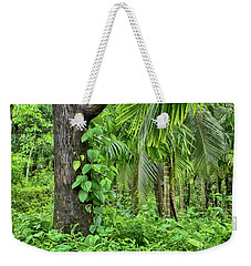Weekender Tote Bag featuring the photograph Nature 7 by Charuhas Images