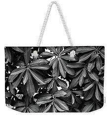 Nature Background, Green Leaves, Flowers In Natural Light And Sh Weekender Tote Bag