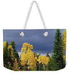 Weekender Tote Bag featuring the photograph North Rim Fall  by Broderick Delaney