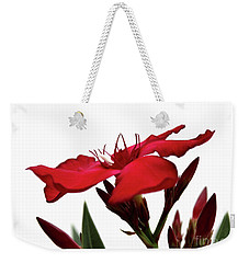 Oleander Blood-red Velvet 3 Weekender Tote Bag by Wilhelm Hufnagl
