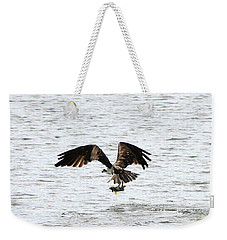 Osprey Fishing In The Afternoon Weekender Tote Bag by Carol Groenen