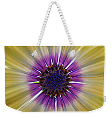 Osteospermum The Cape Daisy Weekender Tote Bag