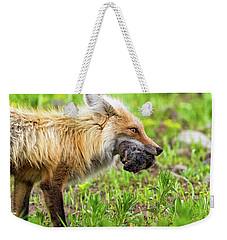 Out Foxed  Weekender Tote Bag by Scott Warner