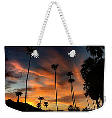 Weekender Tote Bag featuring the photograph Palm Springs by Chris Tarpening