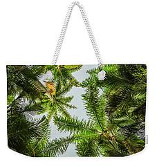 Palm Trees And Blue Sky Weekender Tote Bag