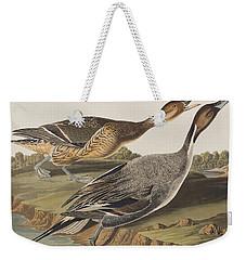 Pin-tailed Duck Weekender Tote Bag by John James Audubon