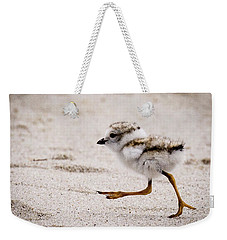 Piping Plover Chick Weekender Tote Bag