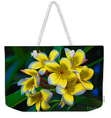 Weekender Tote Bag featuring the photograph 1- Plumeria Perfection by Joseph Keane