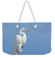 Poised Weekender Tote Bag by Fraida Gutovich