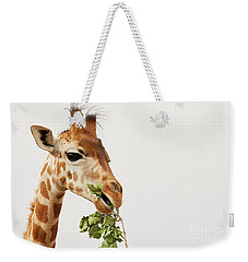 Portrait Of A Rothschild Giraffe  Weekender Tote Bag