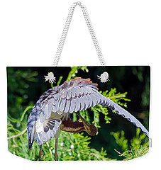 Preening Weekender Tote Bag by Kenneth Albin