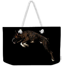 Purebred Boxer Dog Isolated On Black Background Weekender Tote Bag