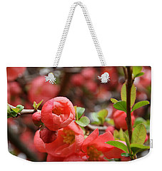 Quince Blossoms Weekender Tote Bag by Katie Wing Vigil
