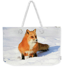 Red Fox Weekender Tote Bag by Steve McKinzie