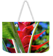 Weekender Tote Bag featuring the photograph Red Heliconia Hawaii by D Davila
