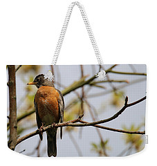 Red Robin Weekender Tote Bag by Living Color Photography Lorraine Lynch