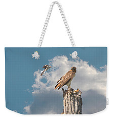 Red-tailed Hawk And Mockingbird Dispute Weekender Tote Bag