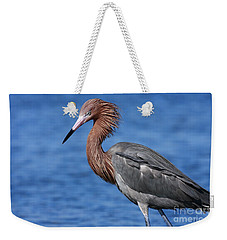 Reddish Egret In Blue Weekender Tote Bag