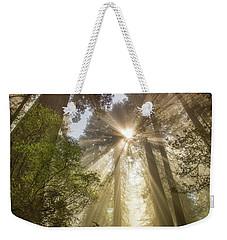 Redwoods Sunburst Weekender Tote Bag