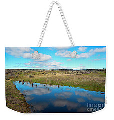 Weekender Tote Bag featuring the photograph Reflections Of Spring by Mike Dawson