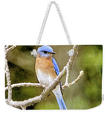 Weekender Tote Bag featuring the photograph Rhapsody In Blue by Betty LaRue