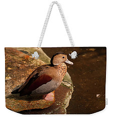 Weekender Tote Bag featuring the photograph Ringed Teal On A Rock by Chris Flees