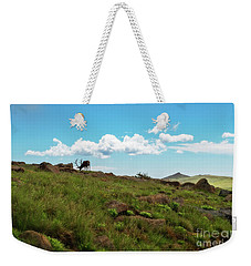 Rocky Mountain Elk Weekender Tote Bag