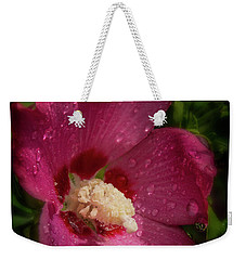 Rose Of Sharon Hibiscus With Rain Drops Weekender Tote Bag
