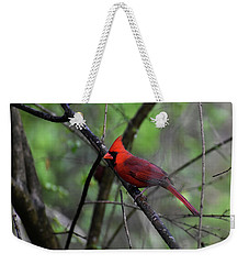 Weekender Tote Bag featuring the photograph Saint Louis by Skip Willits